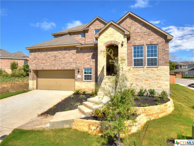 616 Treetop Pass, New Braunfels, TX 78130 (MLS #357800) :: Vista Real Estate