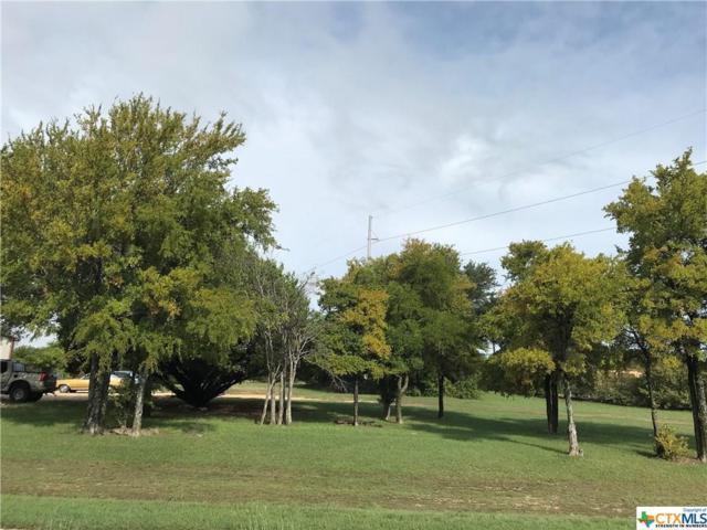 411 & 503 S. Twin Creek Drive, Killeen, TX 76541 (MLS #360289) :: Magnolia Realty