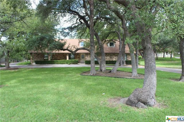 111 Mountain Lion, Harker Heights, TX 76548 (#360824) :: 12 Points Group