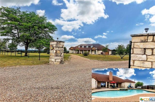 4620 Fm 1783, Gatesville, TX 76528 (MLS #361123) :: RE/MAX Land & Homes