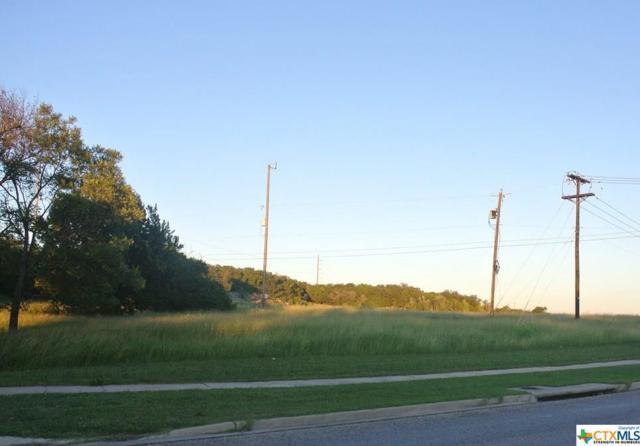 1349 E Fm 2410 Road, Harker Heights, TX 76548 (MLS #361409) :: Vista Real Estate