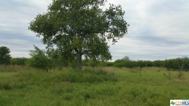 61 Fm 2980 South, Yorktown, TX 78164 (MLS #362686) :: RE/MAX Land & Homes