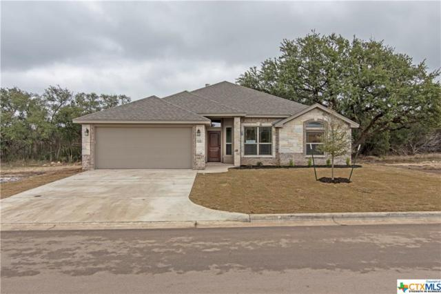 521 Holstein Drive, Belton, TX 76513 (#363202) :: 12 Points Group