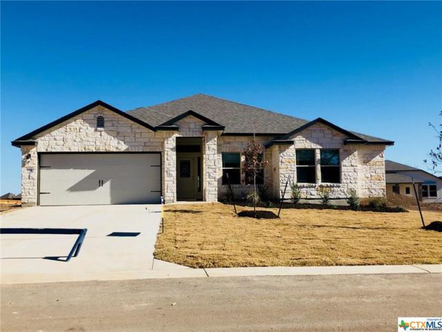 5569 Othello Drive, Belton, TX 76513 (#363512) :: 12 Points Group