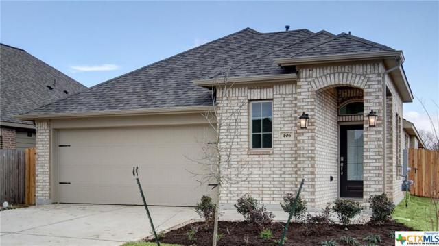405 Lacey Oak Loop, San Marcos, TX 78666 (MLS #363710) :: Erin Caraway Group