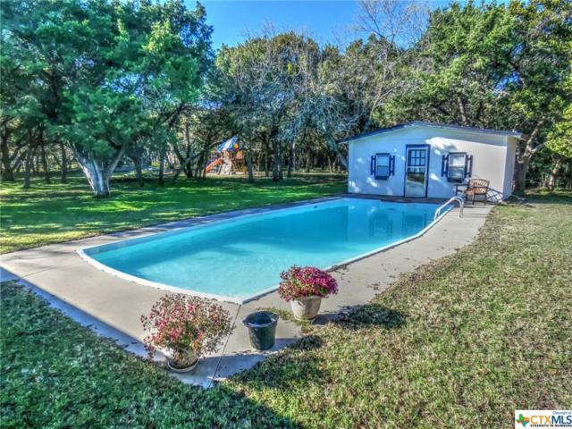 119 Green Oaks, Killeen, TX 76542 (MLS #364097) :: Vista Real Estate