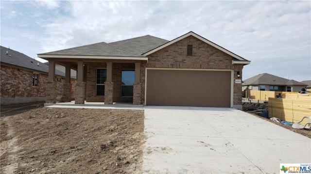 6226 Dorothy Muree Drive, Temple, TX 76502 (MLS #365573) :: The i35 Group