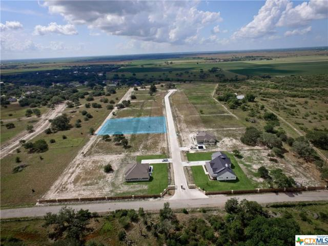 81 Calle Arroyo, Inez, TX 77968 (MLS #365605) :: Kopecky Group at RE/MAX Land & Homes