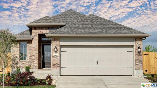 533 Lacey Oak Loop, San Marcos, TX 78666 (MLS #366031) :: Erin Caraway Group