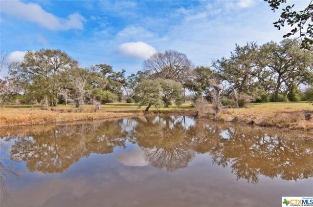 8378 County Road 284, Edna, TX 77957 (MLS #366952) :: Magnolia Realty
