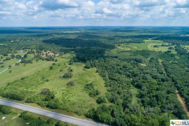 TBD N Highway 183, Gonzales, TX 78629 (MLS #367113) :: The i35 Group