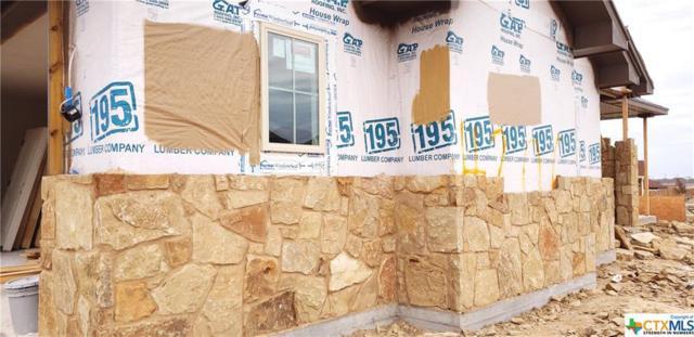 4206 Green Creek Drive, Salado, TX 76571 (MLS #368079) :: Vista Real Estate