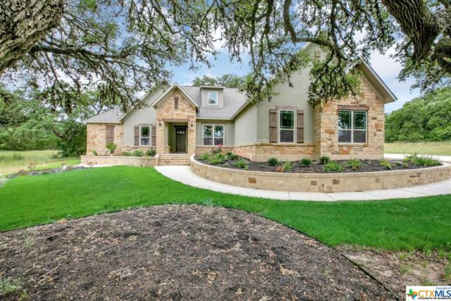 1353 Merlot, New Braunfels, TX 78132 (MLS #369457) :: Erin Caraway Group