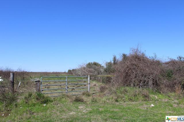 1252 Wittnebert, Seadrift, TX 77983 (MLS #370067) :: RE/MAX Land & Homes