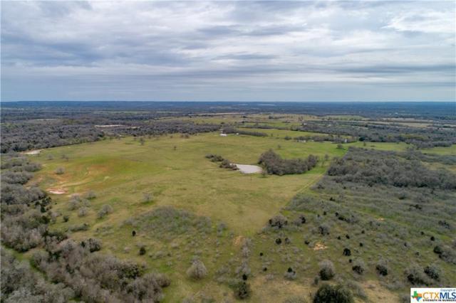 684 County Road 456, Waelder, TX 78959 (MLS #370402) :: Kopecky Group at RE/MAX Land & Homes