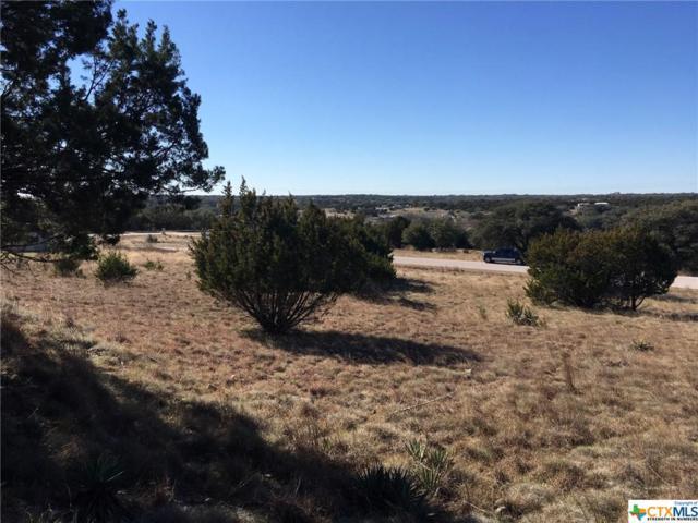 352 County Road 3372, Kempner, TX 76539 (MLS #371098) :: Vista Real Estate