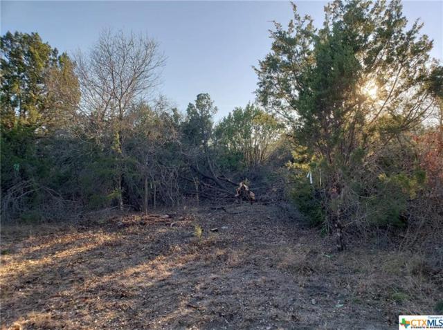 412 Skyline Circle, Gatesville, TX 76528 (MLS #371116) :: The Real Estate Home Team