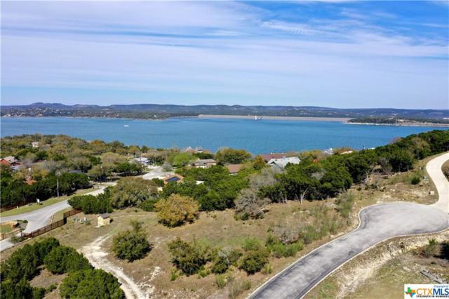 980 El Capitan Trail, Canyon Lake, TX 78133 (#371461) :: Realty Executives - Town & Country