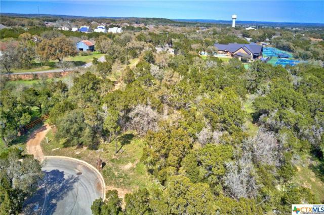 743 Wombat Grove, New Braunfels, TX 78132 (MLS #371569) :: Vista Real Estate
