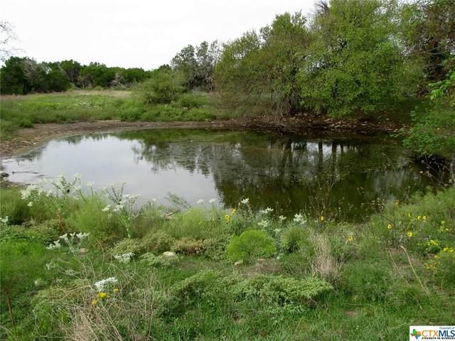 TBD County Road 181, Purmela, TX 76566 (MLS #371663) :: Berkshire Hathaway HomeServices Don Johnson, REALTORS®