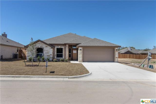 616 Holstein Drive, Belton, TX 76513 (#371773) :: 12 Points Group