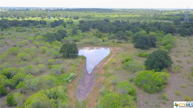 2720 Elm Creek, Seguin, TX 78155 (MLS #372508) :: Kopecky Group at RE/MAX Land & Homes