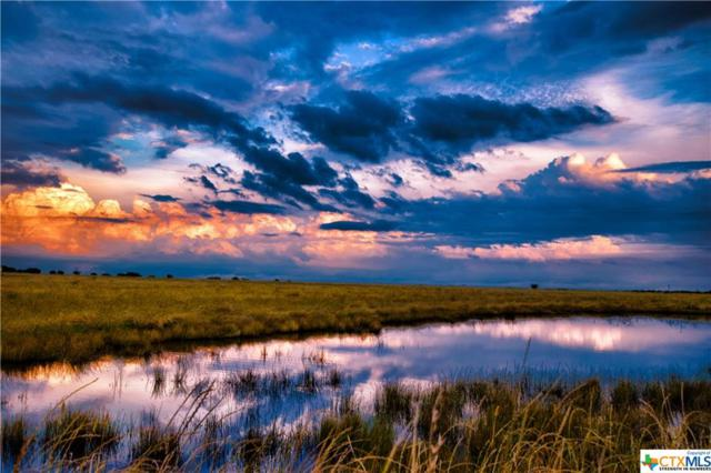 1369 Branch Road, Seguin, TX 78155 (MLS #374640) :: Vista Real Estate