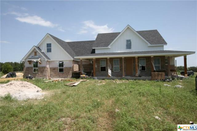 640 Blackbuck Ridge Drive, Lampasas, TX 78505 (#374715) :: Realty Executives - Town & Country