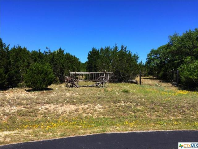 2254 Texas Springs, New Braunfels, TX 78132 (MLS #374871) :: Erin Caraway Group