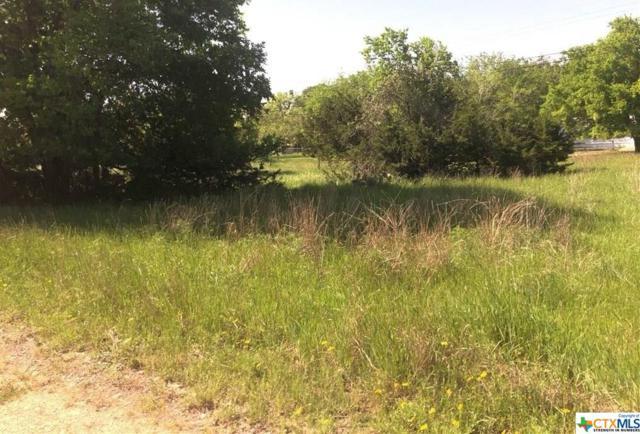 43 Jessamine Drive, Morgan's Point Resort, TX 76513 (MLS #374901) :: Vista Real Estate