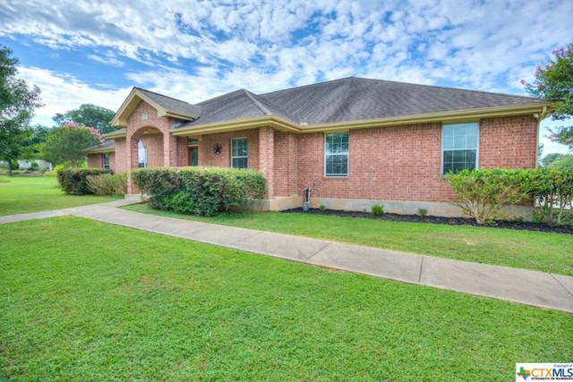 255 Texas Country Drive, New Braunfels, TX 78132 (#375249) :: Realty Executives - Town & Country