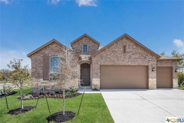 105 Emerald Garden Road, San Marcos, TX 78666 (#375262) :: Realty Executives - Town & Country