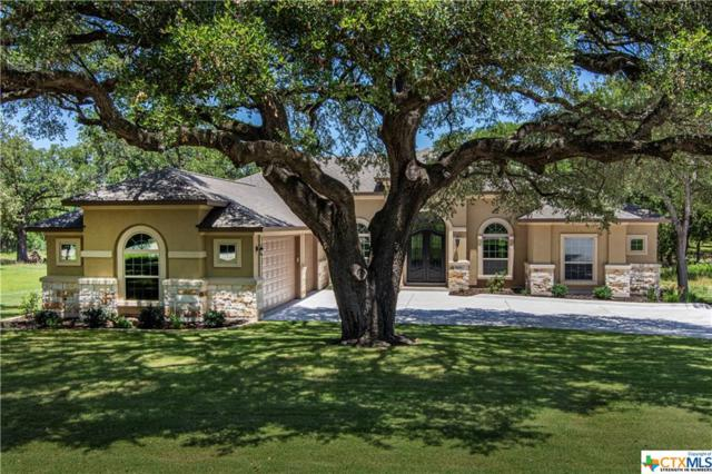 10721 Vista Heights Drive, Georgetown, TX 78628 (#375987) :: Realty Executives - Town & Country