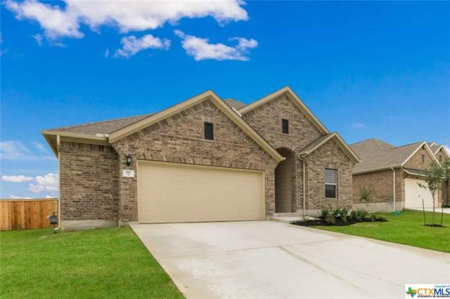 817 Silver Fox, Cibolo, TX 78108 (MLS #376059) :: The Graham Team