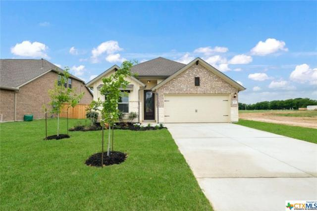 2033 Market Trail, Schertz, TX 78154 (MLS #376118) :: The Graham Team