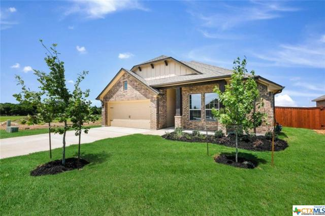 2032 Market Trail, Schertz, TX 78154 (MLS #376120) :: The Graham Team