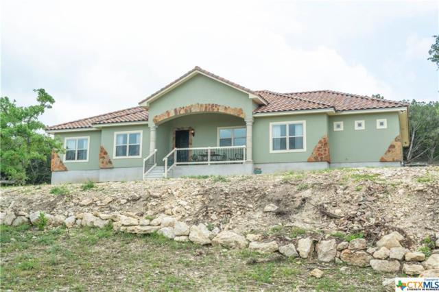 1181 Elm Valley Drive, Bulverde, TX 78163 (MLS #377889) :: Berkshire Hathaway HomeServices Don Johnson, REALTORS®