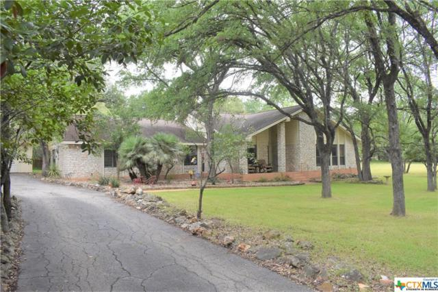 209 Sinuso Drive, Georgetown, TX 78628 (MLS #378456) :: RE/MAX Land & Homes