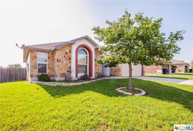 424 Prairie Lark, Temple, TX 76502 (MLS #378800) :: Brautigan Realty