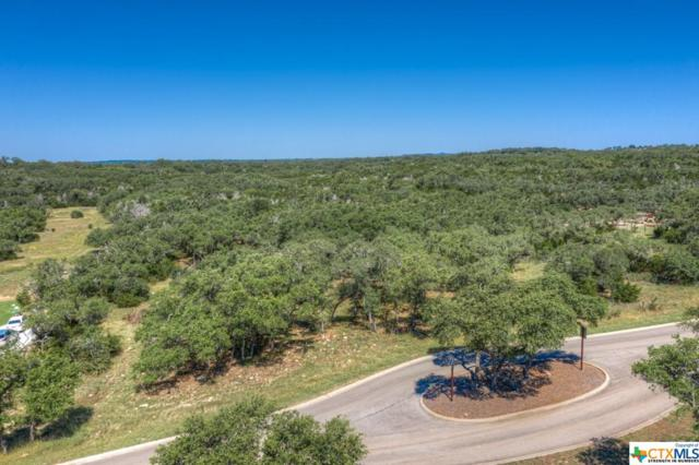 2224 Cascada Parkway, Spring Branch, TX 78070 (#379352) :: Realty Executives - Town & Country