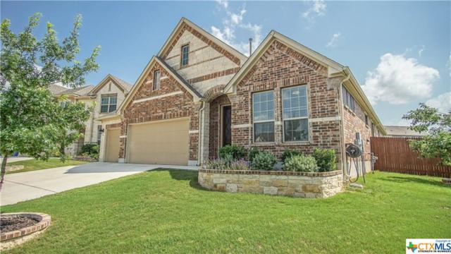 916 Hickory Hollow, New Braunfels, TX 78130 (MLS #379952) :: Vista Real Estate