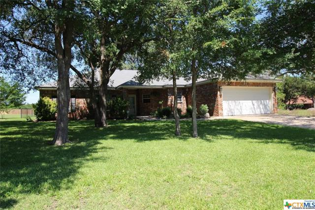 153 Wayne Drive, Nolanville, TX 76559 (MLS #380350) :: The i35 Group