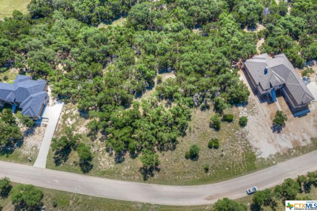 419 Havasu Point, Spring Branch, TX 78070 (#380654) :: Realty Executives - Town & Country