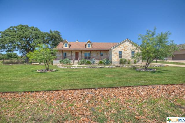 1174 Via Principale, New Braunfels, TX 78132 (#381631) :: Realty Executives - Town & Country