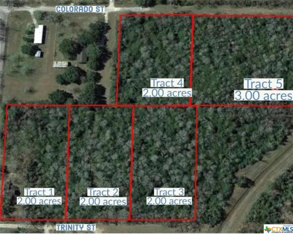 Tract 1 Trinity, Edna, TX 77957 (MLS #382312) :: The Zaplac Group