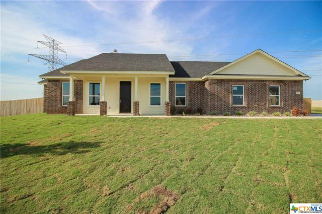 9605 Bozon Hill Court, Salado, TX 76571 (MLS #382760) :: The Graham Team