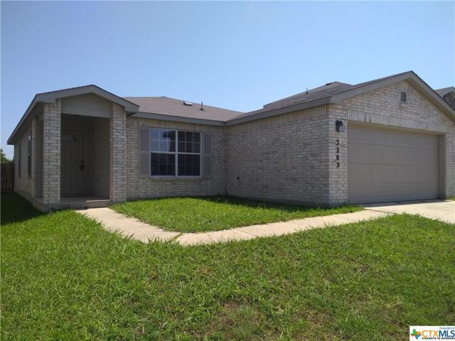 3205 John Porter Drive, Killeen, TX 76543 (MLS #383791) :: The Graham Team