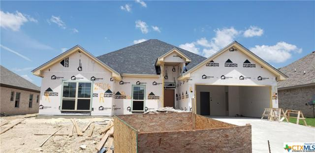 2506 Emerald Dove Drive, Temple, TX 76502 (#383798) :: Realty Executives - Town & Country