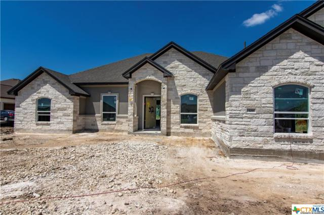 329 Independence Drive, Georgetown, TX 78633 (#384118) :: 12 Points Group