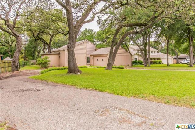 239 Woodland Trail, Belton, TX 76513 (MLS #384222) :: Brautigan Realty